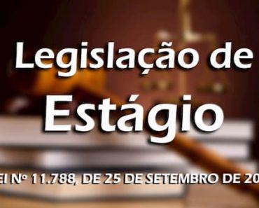 Lei do Estagiário